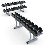 Life Fitness Strength Signature Series Dumbbell Ra...