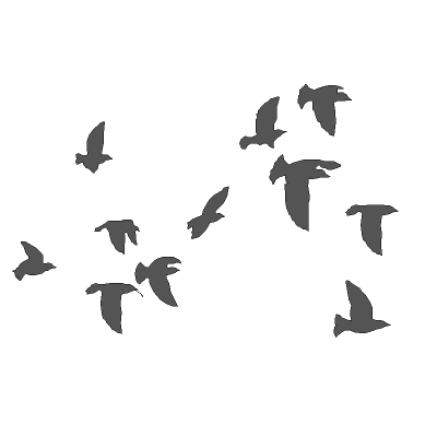 Low poly flocks of birds. 2.5D in that each indivi....