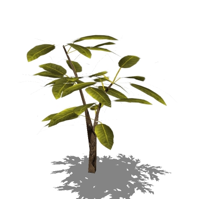 A selection of 4 small generic shrubs. Low-poly sk....