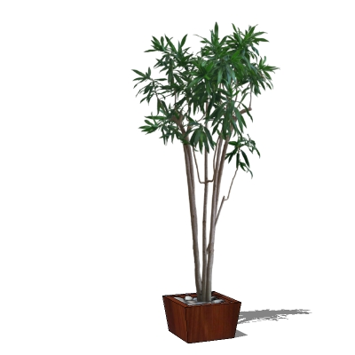 HQ plants are 2D billboards in a 3D pot (in order ....