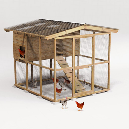 Chicken Coop.