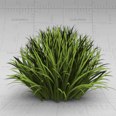 Generic clump of grass/border shrubbery. Approx. 1....