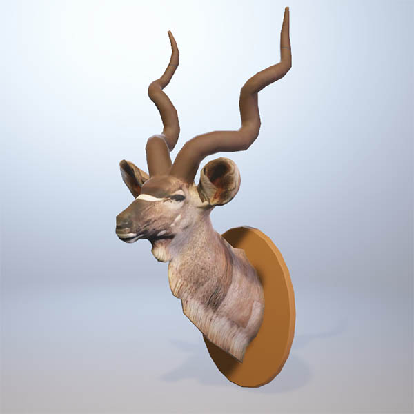 Mounted Kudu head. Available in 