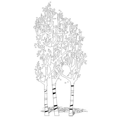 CAD style silver birch trees.