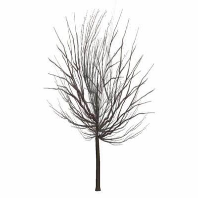 Very low-poly tree (50 faces). It casts no shadow,....