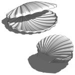Sea shell.<br />