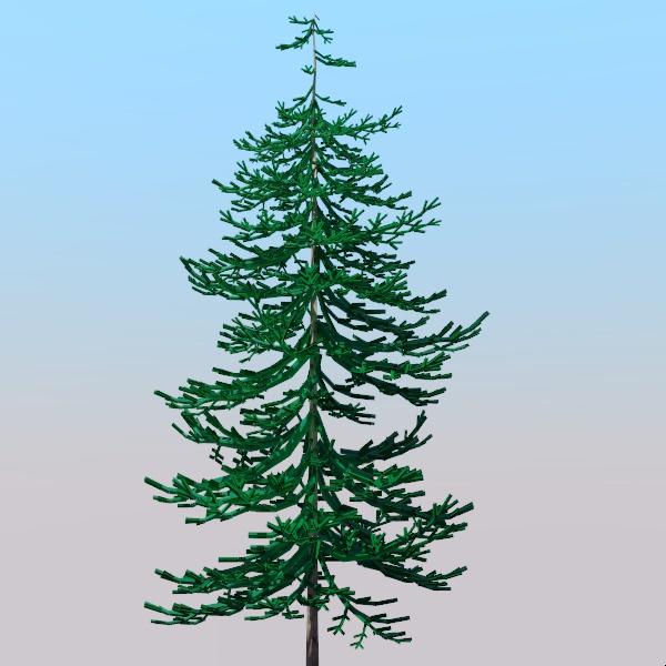 Generic pine tree for use medium distance. It has ....