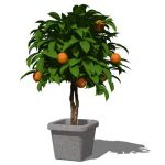 View Larger Image of Potted Plant 02