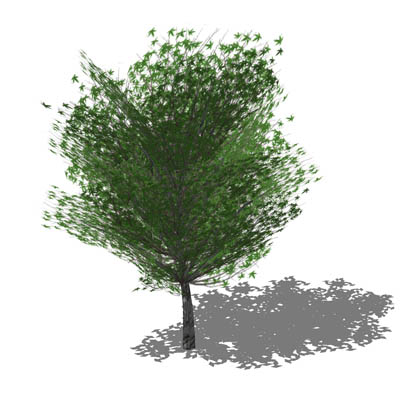 Generic tree in opaque and semi transparent config....